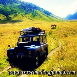 sewa jeep wisata bromo malang1